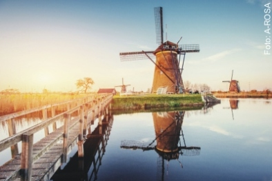 Rotterdam Windmühlen